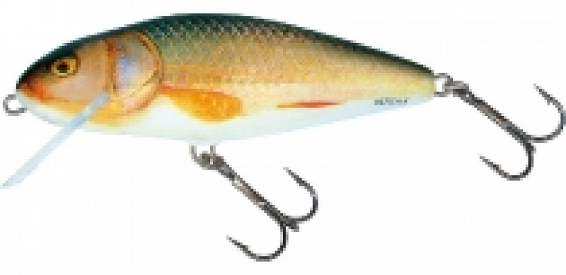 Wobler Perch  PH12 RR