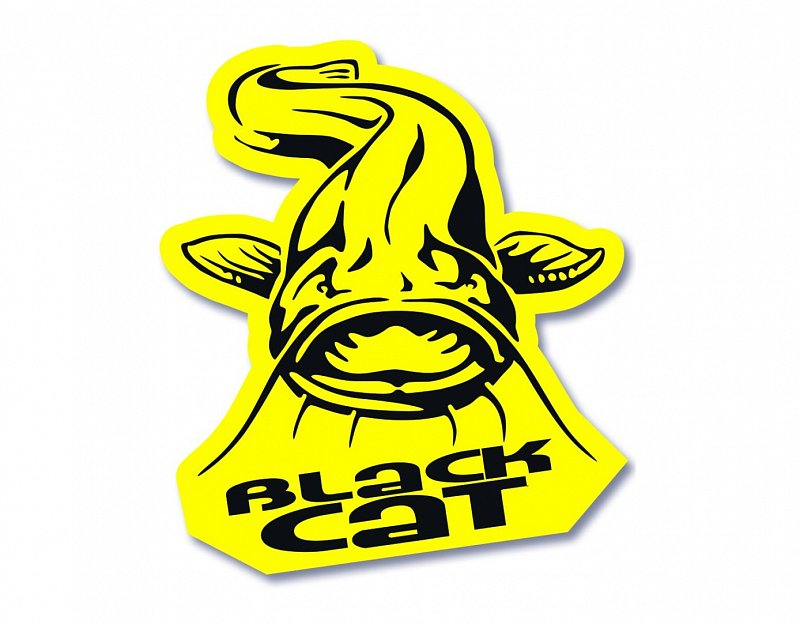 Nálepka Catfish Sticker