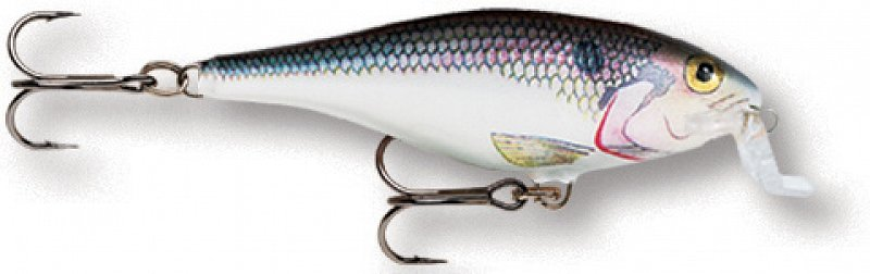 Wobler Shallow Shad Rap 05 SD